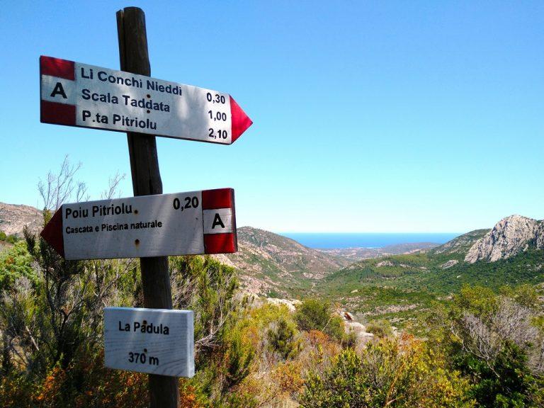 Itinerario in Sardegna a Monte Nieddu anche sentieri naturali e trekking
